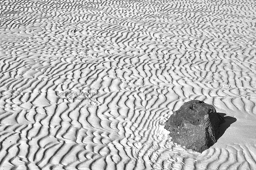 Sand Ripples_Barbara Martin