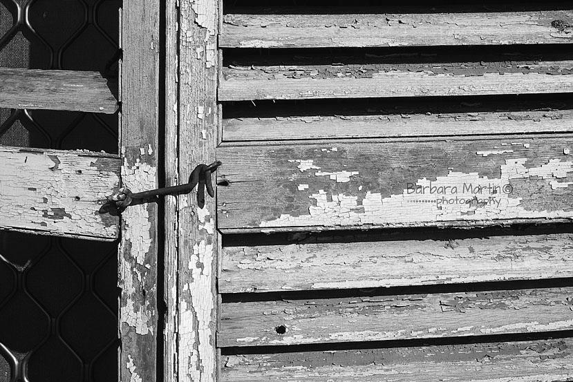 Window Shutters_Barbara Martin