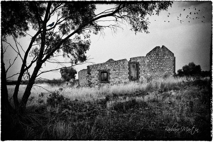 mb-farmhouse-ruins